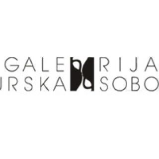 galeria murska sobota, murska sobota galeria, muzej in galeria